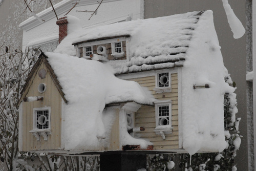 Bird_house_in_winter_white